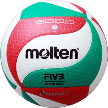 Top Volleyball Fritz-Sport