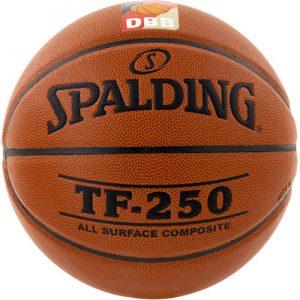 Fritz-Sport Spalding TF 250 DBB